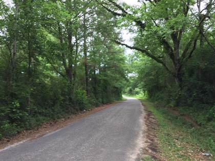 Lots And Land for sale in 2751 Bronze Rd SE, Ruth, MS, 39662