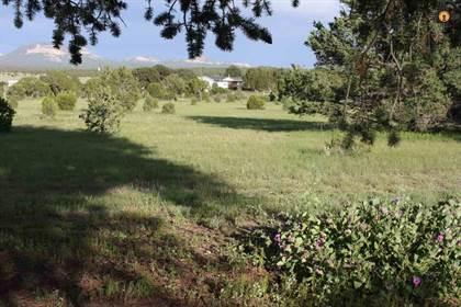 Residential Property for sale in 9 Buckhorn Circle, Pie Town, NM, 87827