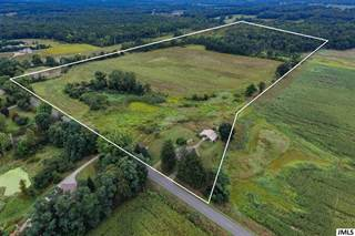 Farm And Agriculture for sale in Vl WELLMAN RD, Parma, MI, 49269
