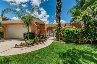 Single Family for sale in 40 SHELL CIRCLE, Palm Harbor, FL, 34684
