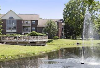 Apartment For Rent In Southfield Apartments 1 Bedroom 1 Bath With Fireplace