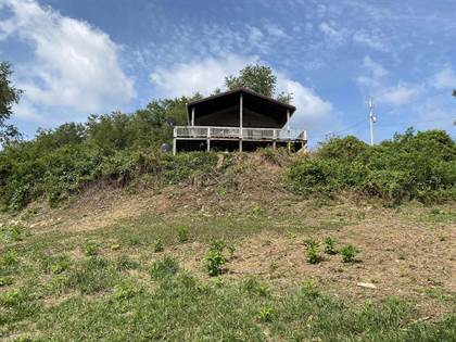 Residential Property for sale in 130 SHEFFY Lane, Staffordsville, VA, 24167