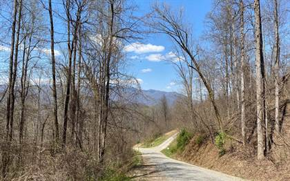 Lots And Land for sale in LOT 4 N RDG @ HIGH MEADOWS Lot 4, Hayesville, NC, 28904