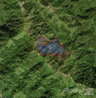 Lots And Land for sale in Rubias Ward, Road PR-128, Yauco, PR, 00606