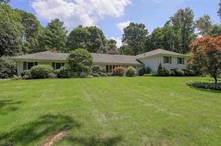 Single Family for sale in 67 TOWER MOUNTAIN DR, Bernardsville, NJ, 07924