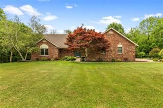 Single Family for sale in 1132 Summer Creek Lane, Millstadt, IL, 62260