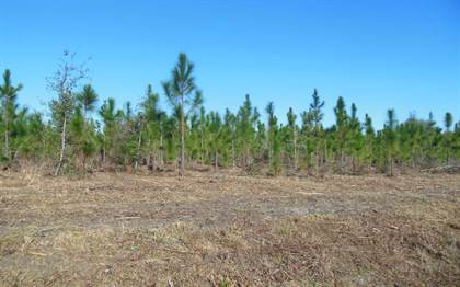 Lots And Land for sale in TBD SW CR 141, Jasper, FL, 32052