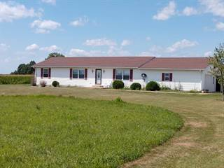 Single Family for sale in 13439 County Road 45, Luray, MO, 63453
