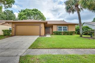 Single Family for sale in 2238 BEACON POINT BOULEVARD, Palm Harbor, FL, 34683