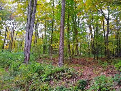 Residential Property for sale in 0 Pennock Brook Drive West, Little America, NY, 13144