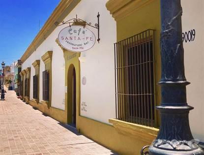 Commercial for sale in Cafe Santa Fe, Todos Santos, Baja California Sur