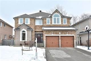Residential Property for rent in 19 Marinucci Crt Lower, Richmond Hill, Ontario, L4C0M3