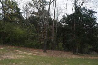 Land for sale in 00 Spring Hill Church, Prentiss, MS, 39663
