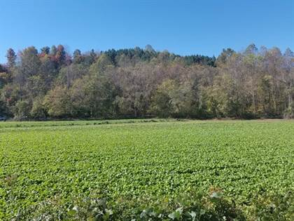 Lots And Land for sale in TBD River Rd, Fieldale, VA, 24089