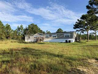 Residential Property for sale in 9976 AMERICAN FARMS RD, East Milton, FL, 32583