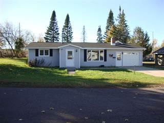 Single Family for sale in 515 Eighth, Calumet, MI, 49913