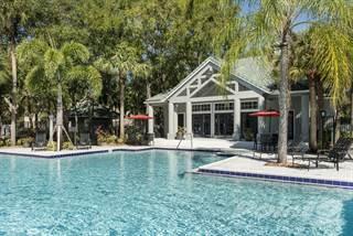 Apartment for rent in Radius Palms, Tampa, FL, 33613