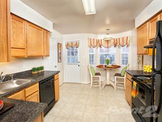 Apartment for rent in Holly Point - The Cambridge, Chesapeake, VA, 23325