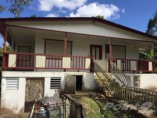 Residential Property for sale in Lares Bo Pieltas, Lares, PR, 00669