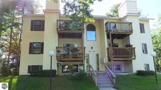 Condo for sale in 4263 Mitchell Creek Drive D2, Traverse City, MI, 49686