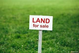 Land for sale in 000 Morton Taylor Road, Van Buren, MI, 48111