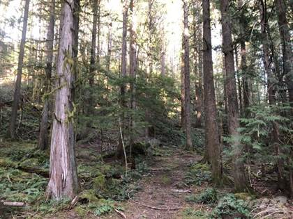 Residential Property for sale in LD50 RIVERBOTTOM Rd W, Duncan, British Columbia, V9L 6J5