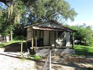 Single Family for sale in 38619 DIXIE DRIVE, Sumner Lake, FL, 33525