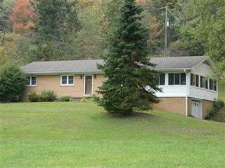 Single Family for sale in 2894 Scratch Gravel Road, Marion, VA, 24354