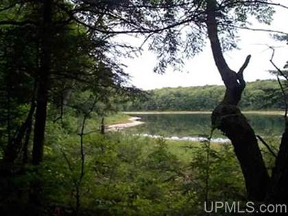 Lots And Land for sale in TBD W Sister Lake H, Wetmore, MI, 49895
