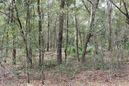 Lots And Land for sale in Lot 24 73 CT, Trenton, FL, 32693