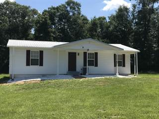 Single Family for sale in 3560 PEANUT Road, Cottondale, FL, 32431