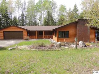 Single Family for sale in 52187  EAGLE POINT RD, Marcell, MN, 56628