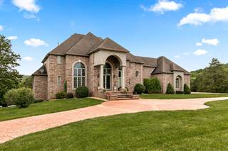 Single Family for sale in 832 South Lloyd Drive, Greater Turners, MO, 65742