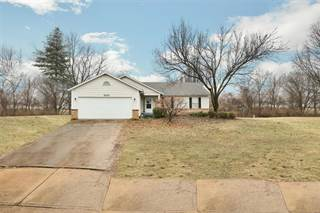 Single Family for sale in 300 Jana Drive, Florissant, MO, 63031