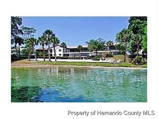 Condo for sale in 6432 River Run Boulevard, Weekiwachee Preserve, FL, 34607