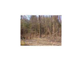Land for sale in 0000 Spencer Road, Brighton, MI, 48114