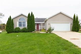Single Family for sale in 4011 W GRATIOT COUNTY LINE RD, Saint Johns, MI, 48879
