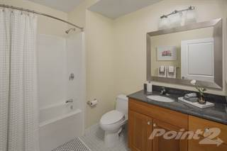 Apartment for rent in 50 & 55 Station Landing - 2.0, Medford, MA, 02155