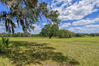 Farm And Agriculture for sale in 7459 NW 193rd Street, Reddick, FL, 32686
