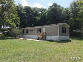 Residential Property for sale in 405 3RD AVENUE, Satsuma, FL, 32189