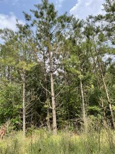 Lots And Land for sale in 0 Morgantown Rd, Foxworth, MS, 39483