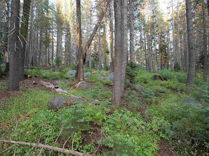 Lots And Land for sale in 14 Bunny Hill Road, Fordyce, CA, 95728