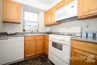 Apartment for rent in Nieuw Amsterdam Apartment Homes - One Bedroom 1 Bath Large, Marlton, NJ, 08053