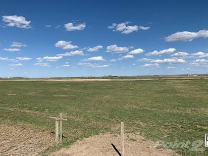 Farm And Agriculture for sale in On Range Road 73 Seven Persons, AB T1B 0K8, Seven Persons, Alberta