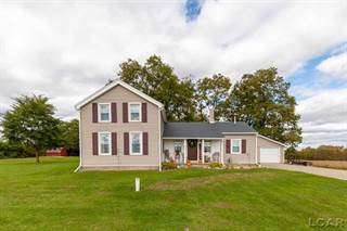 Single Family for sale in 10644 Shepherd Rd, Onsted, MI, 49265