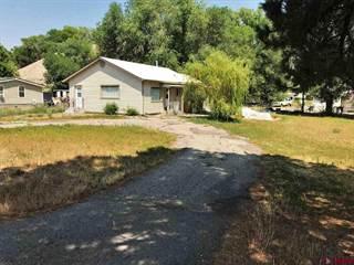 Single Family for sale in 668 Lorah Lane, Hotchkiss, CO, 81419