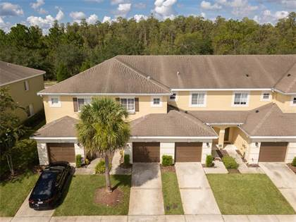 Residential Property for sale in 20428 NEEDLETREE DRIVE, Tampa, FL, 33647