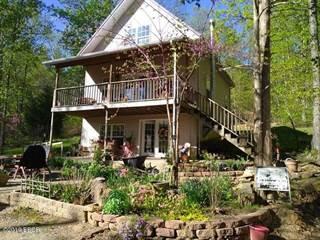 Single Family for sale in 1204 Ponderosa Drive, Goreville, IL, 62939