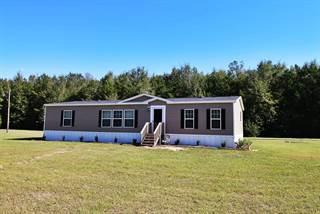 Residential for sale in 6698 80TH Street, Trenton, FL, 32693