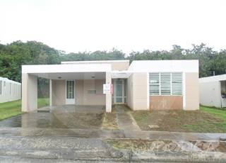 HACIENDA PALOMA CALLE BRAVIA Greater Avon Park FL